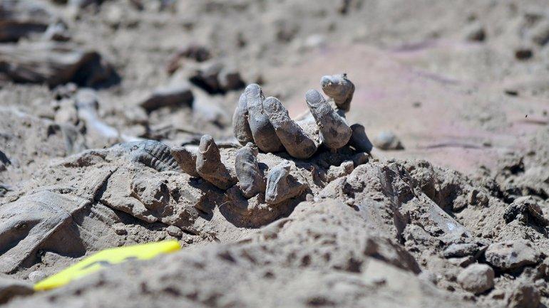 morti in gropile comune irak