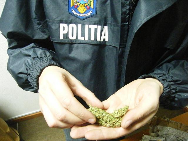 trafic-droguri
