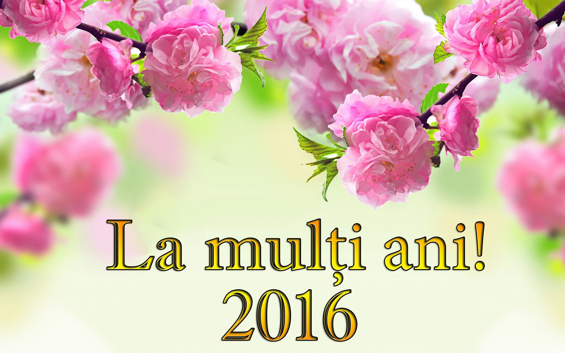 imagine de la multi ani 2016