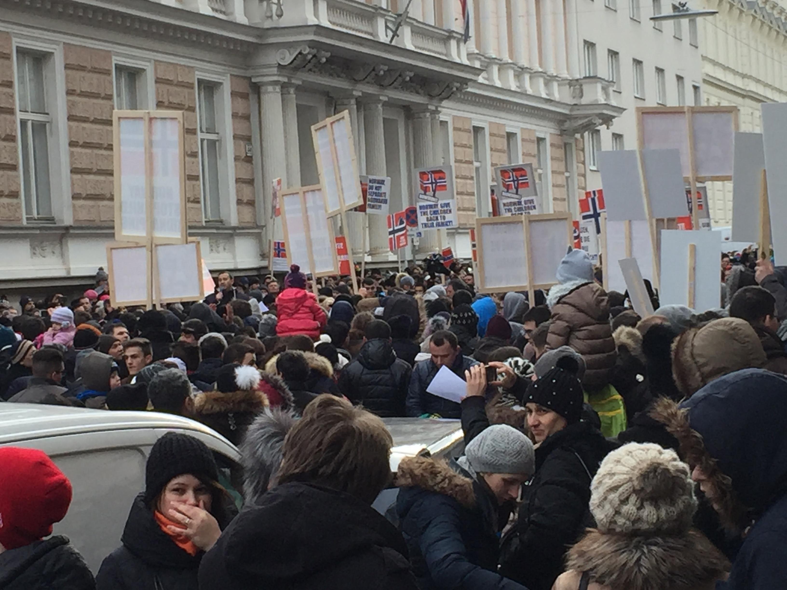 protest familia bodnariu viena