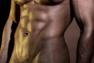 penis mare